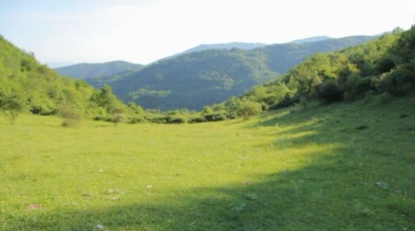 18 luglio 2012| Fondazione Pastificio Cerere | AIPS | Chronicles